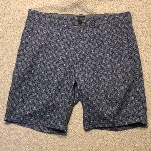 J Crew 34 Stanton Blue White Preppy Shorts Perfect